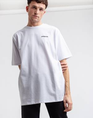T-shirt Patagonia M's Fitz Roy Horizons Responsibili-Tee