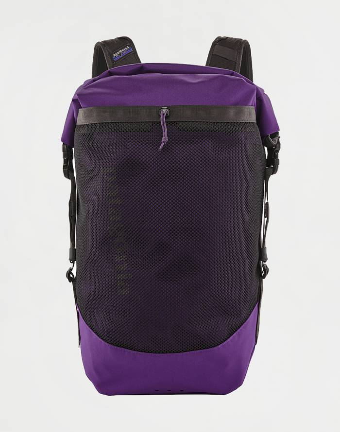 Urban Backpack Patagonia Planing Roll Top Pack 35L
